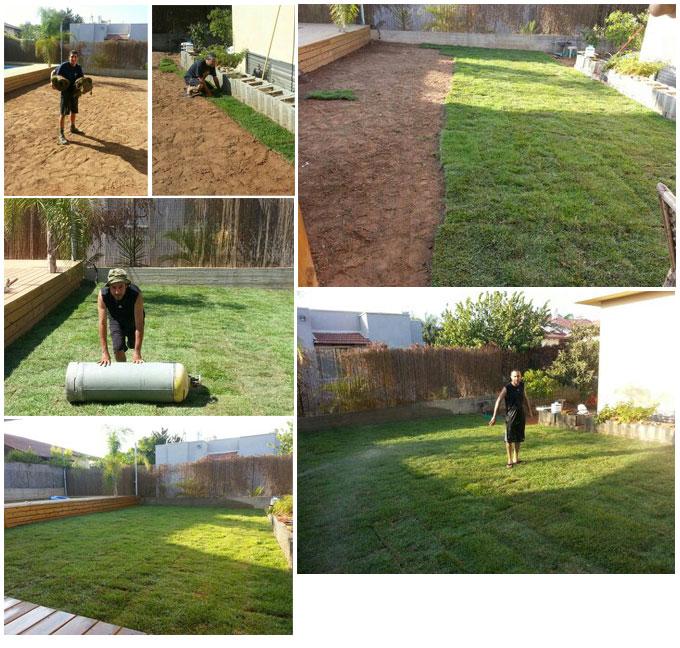מיוחדים הוראות הכנת קרקע לדשא מוכן | דשא מוכן ומרבדי דשא לפרטיים, לעסקים RH-63