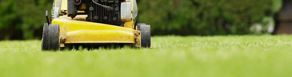 כיסוח דשא מוכן