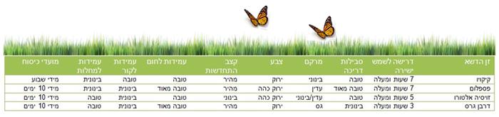 דשא אלימלך, דשא, דשא מוכן, דשא קבוע, מרבדי דשא